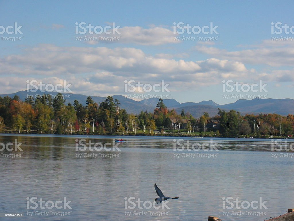 Peaceful flight royalty-free stock photo