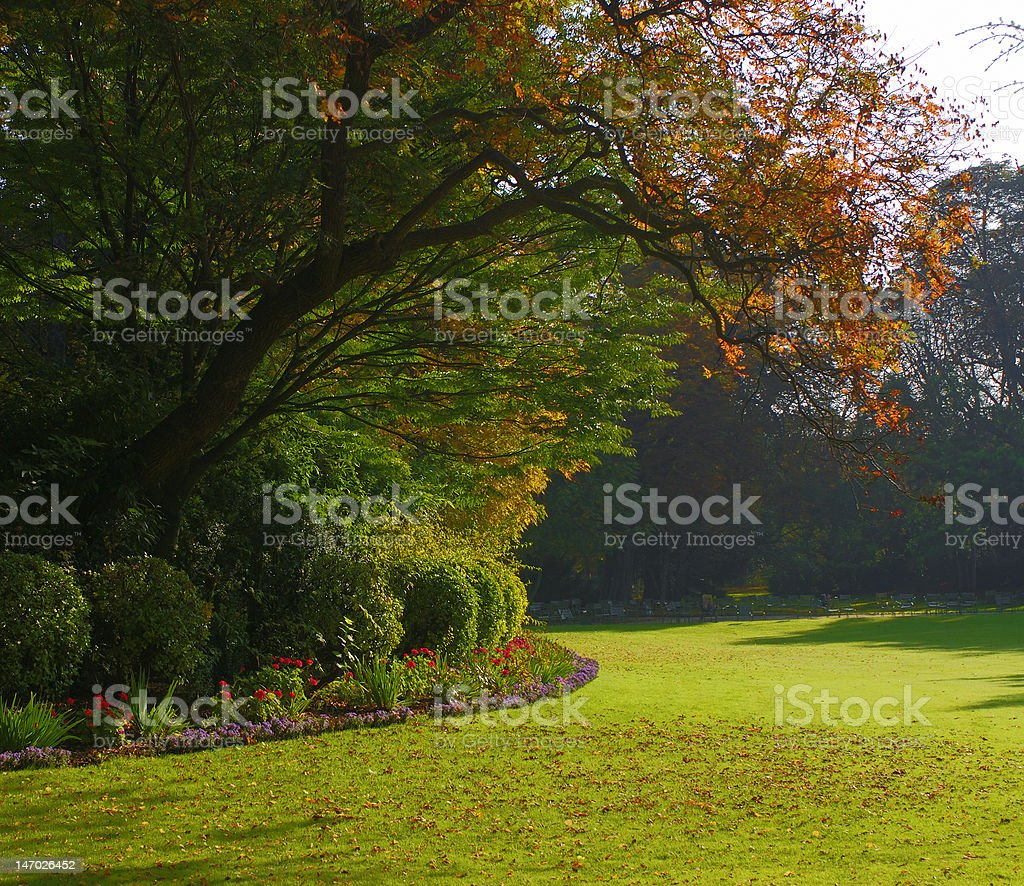 Peaceful garden in autumn royalty-free stock photo