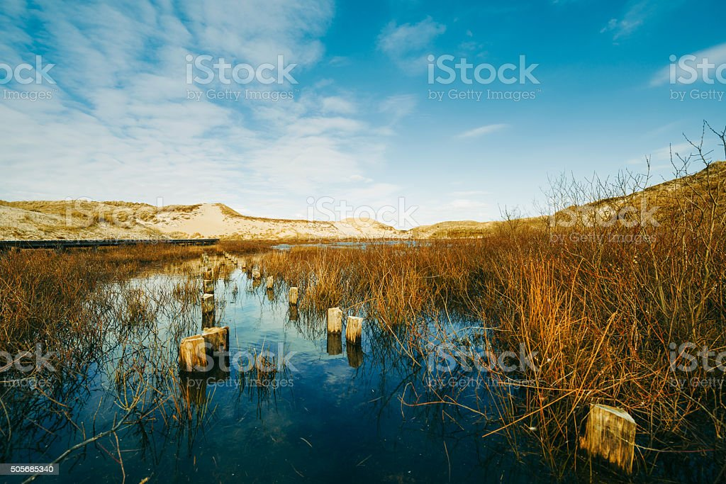 Peaceful lake in the dunes stock photo