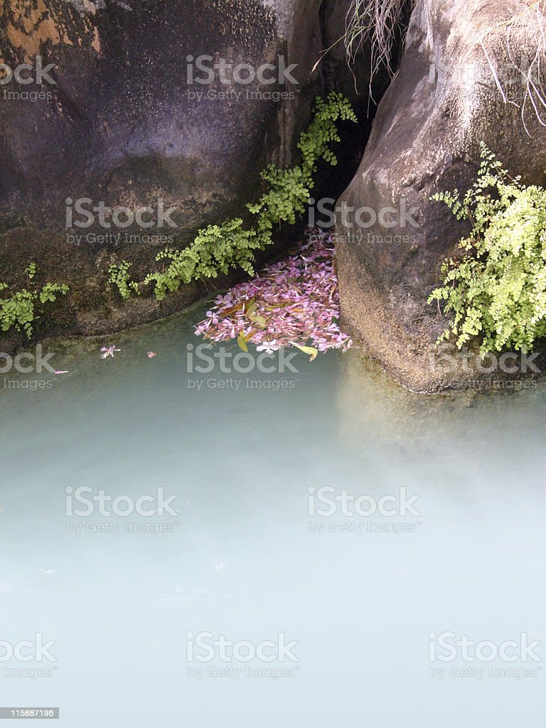 Peaceful lake royalty-free stock photo