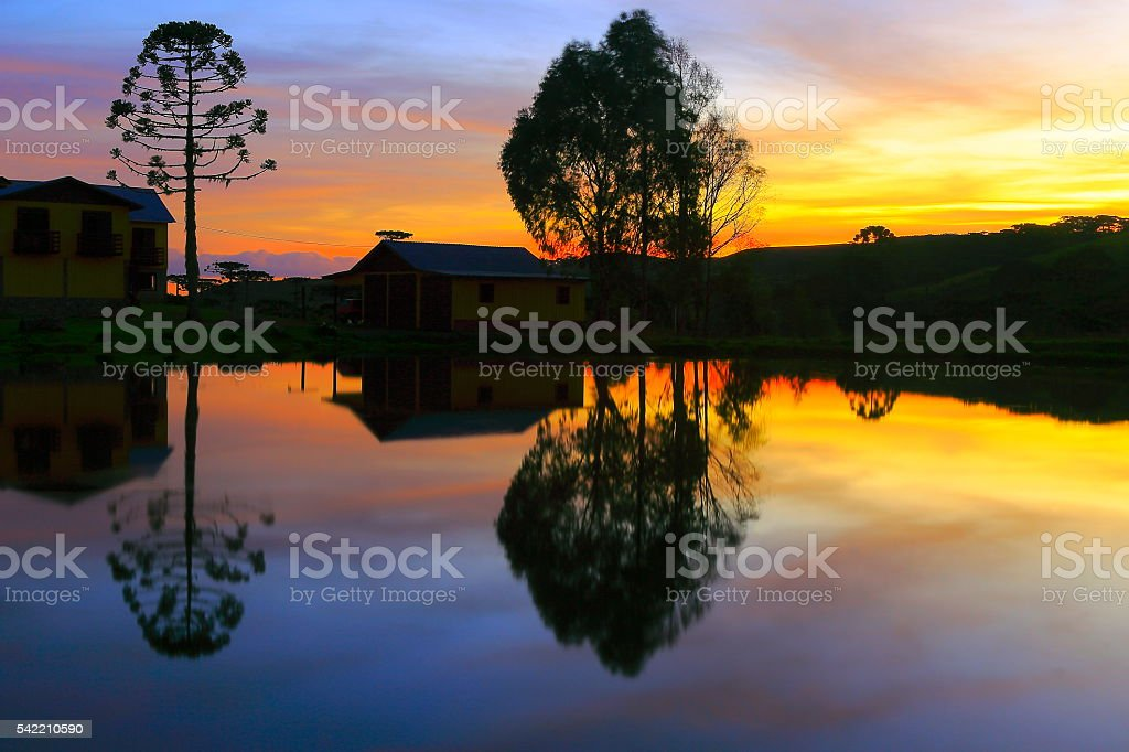 Peaceful lake reflection sunset, araucarias, pampa countryside landscape, southern Brazil stock photo