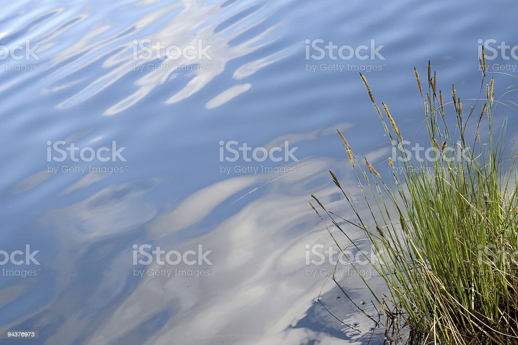Peaceful lake surface royalty-free stock photo