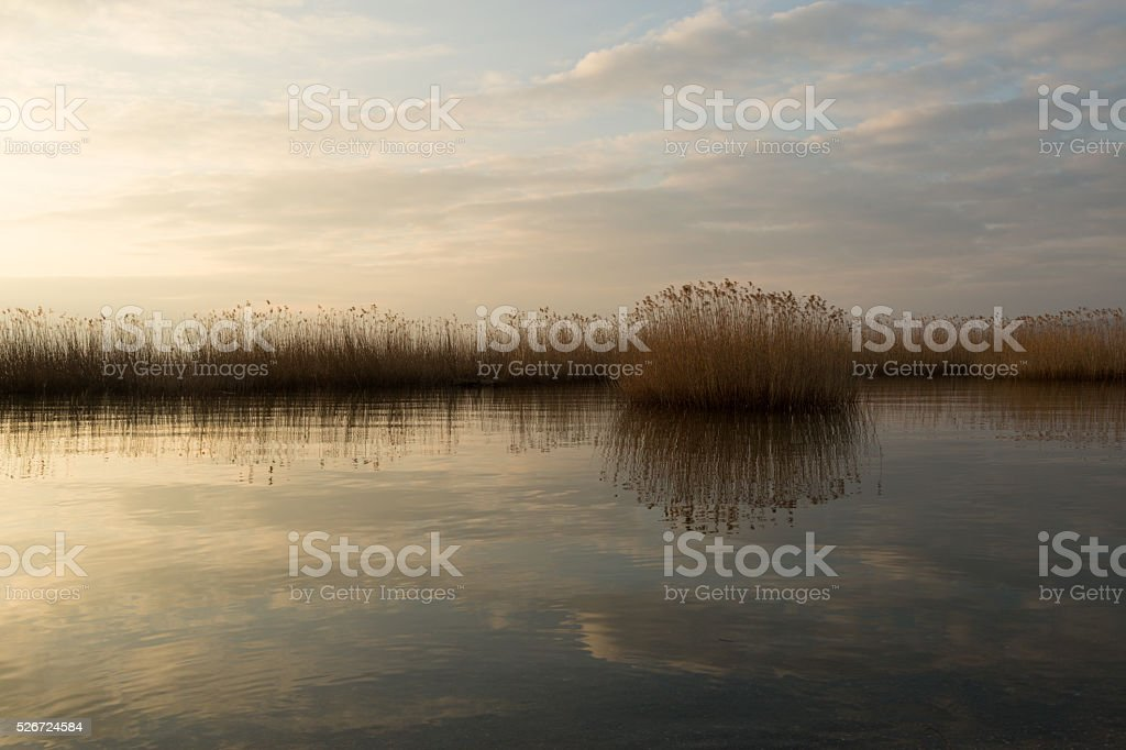 peaceful lake with reflections stock photo