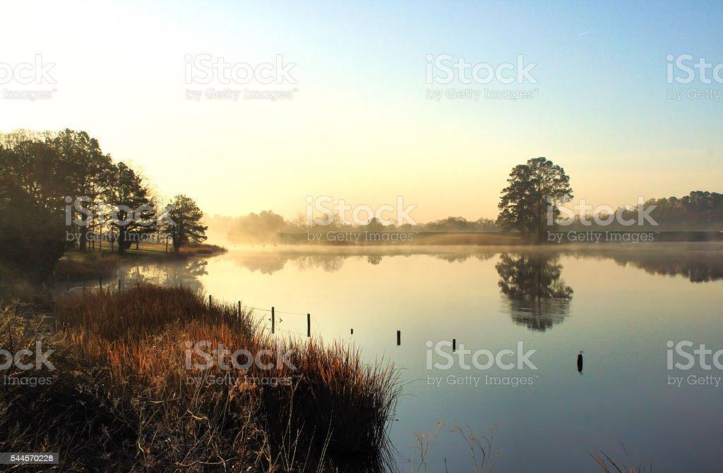 Peaceful Morning at the Lake stock photo