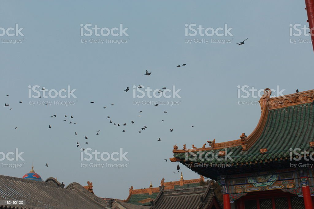 Peaceful morning in a Chinese temple stock photo