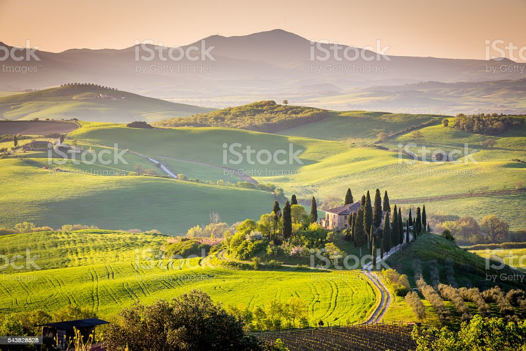 Peaceful morning in Tuscany, Italy stock photo