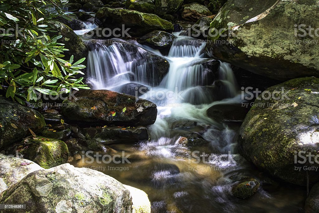 Peaceful Mountain Stream stock photo