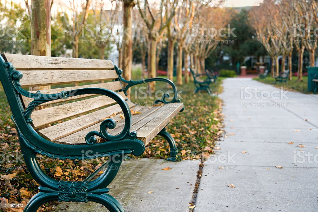 Peaceful Park Bench in the Afternoon royalty-free stock photo