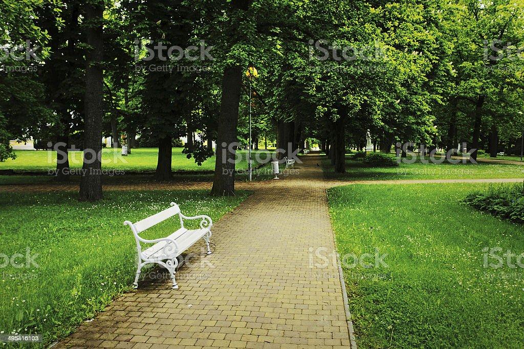Peaceful park panorama stock photo