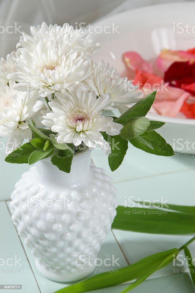 Peaceful Petals stock photo