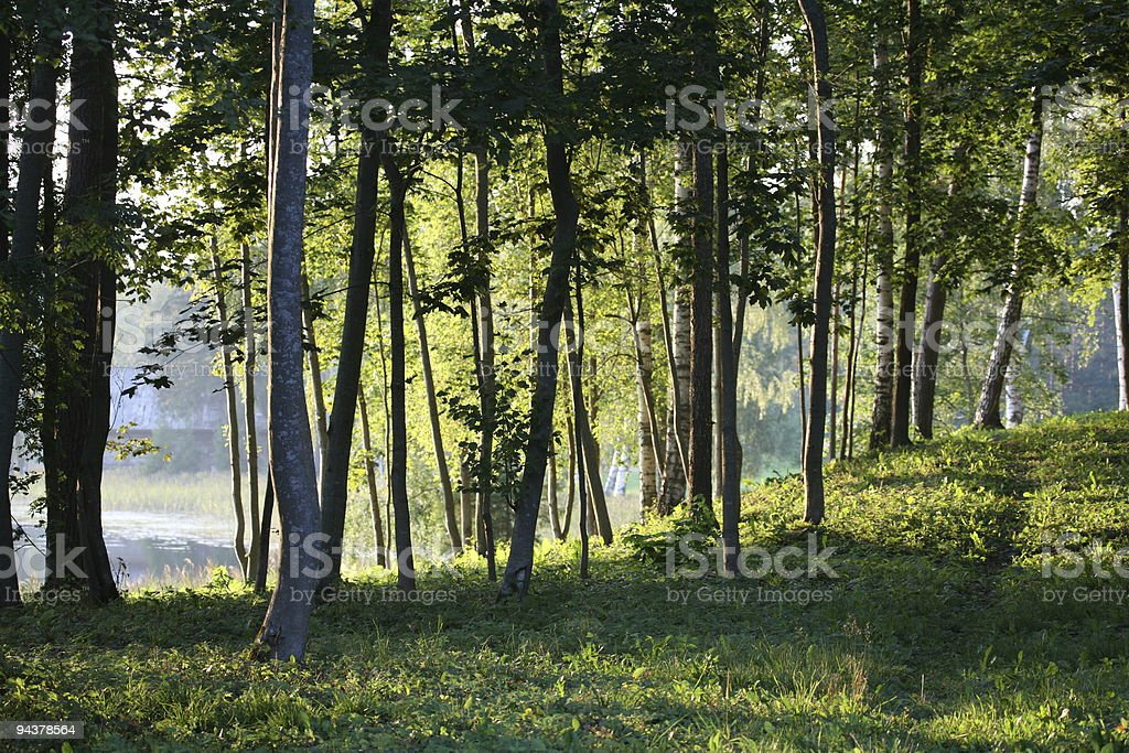 Peaceful place royalty-free stock photo