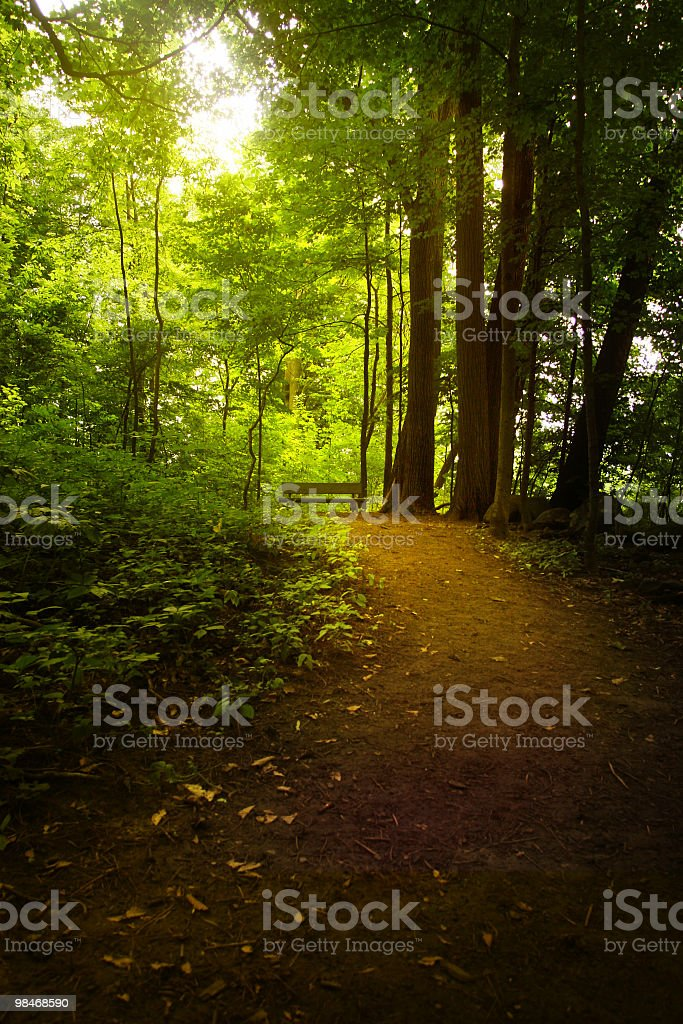 Peaceful place to rest - upstate New York royalty-free stock photo