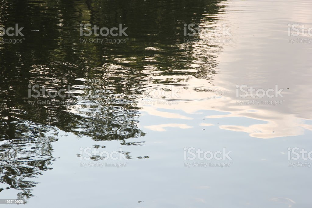 Peaceful Reflection in the Erie Canal stock photo