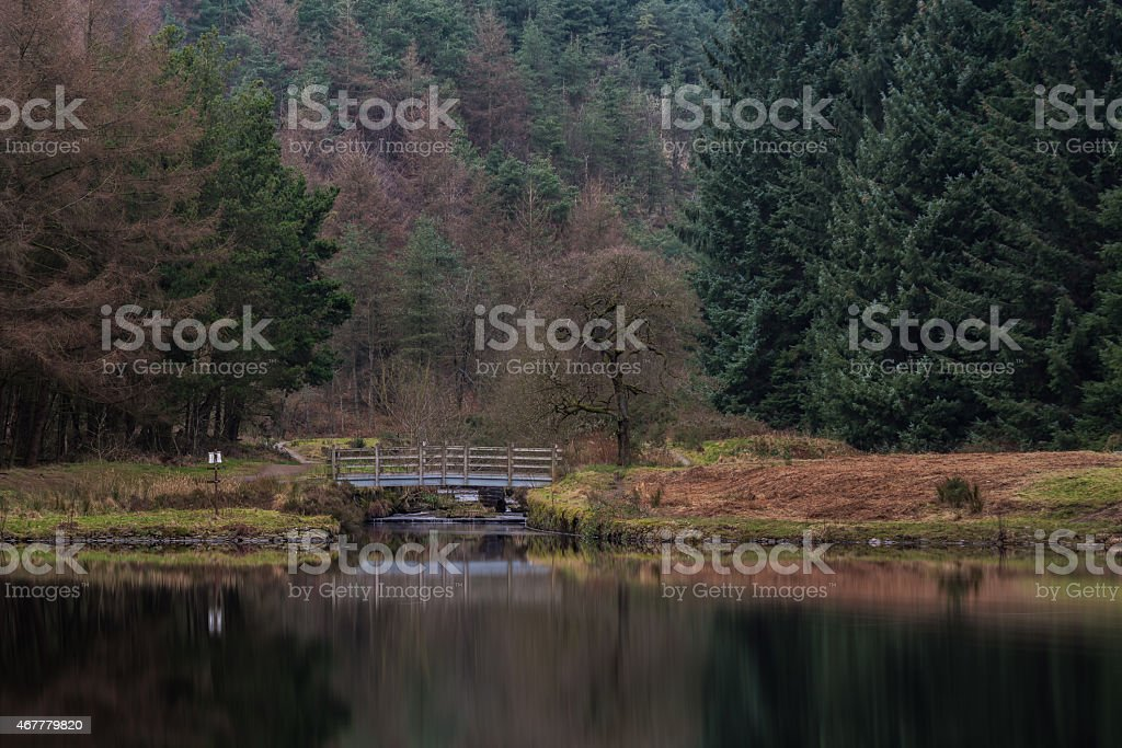 Peaceful Scene At The End Of The Lake. stock photo