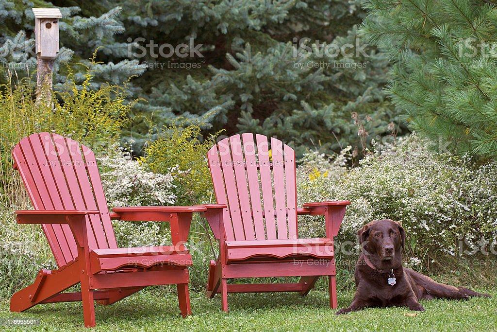Peaceful Setting stock photo