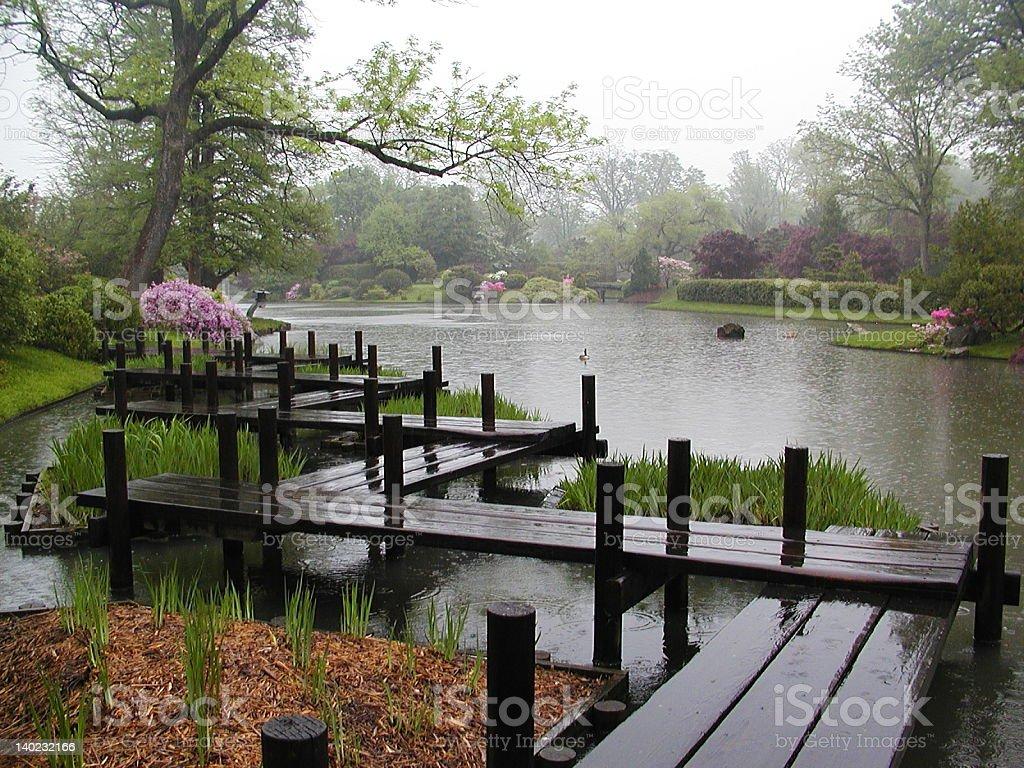 Peaceful Spring Rain royalty-free stock photo