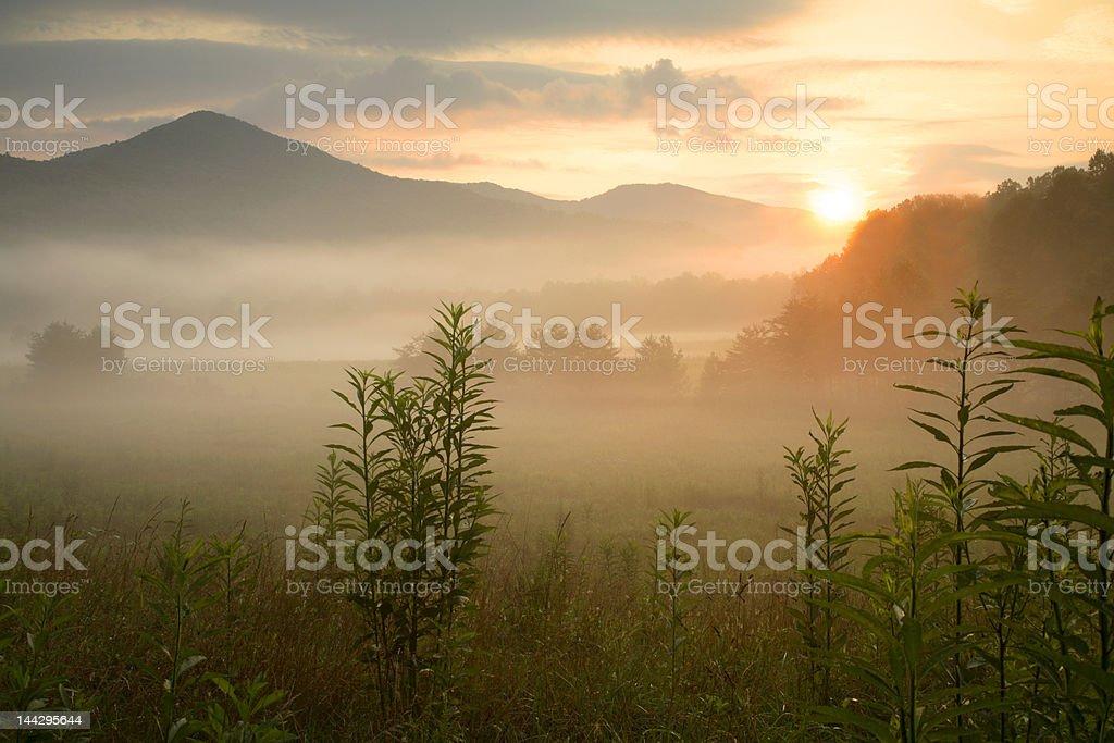 Peaceful Sunrise stock photo