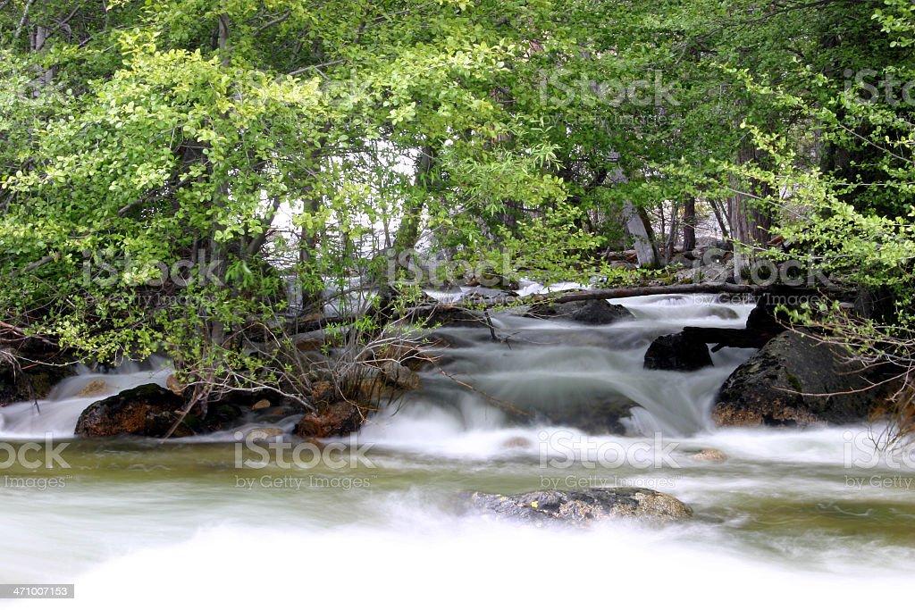 Peaceful Wilderness stock photo