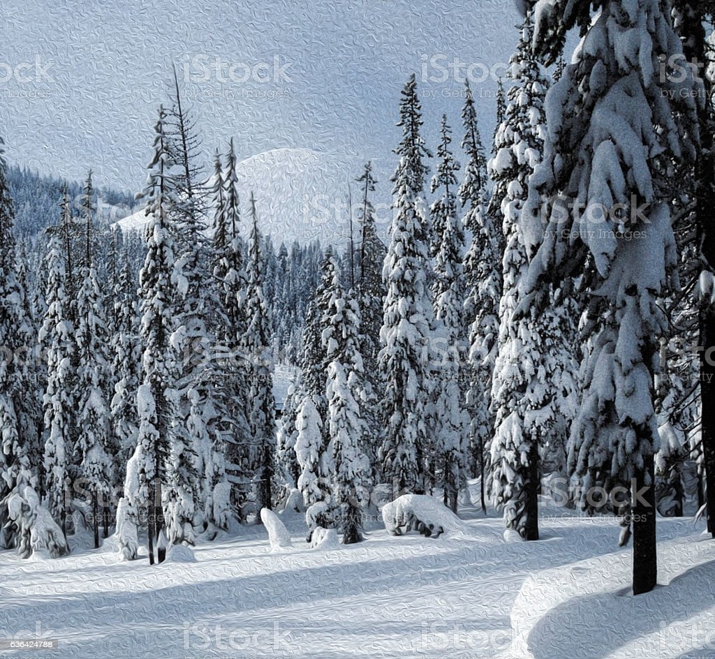 Peaceful Winter Scene, Snow and Pines stock photo