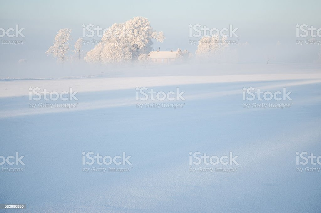 peacefull winter morning stock photo