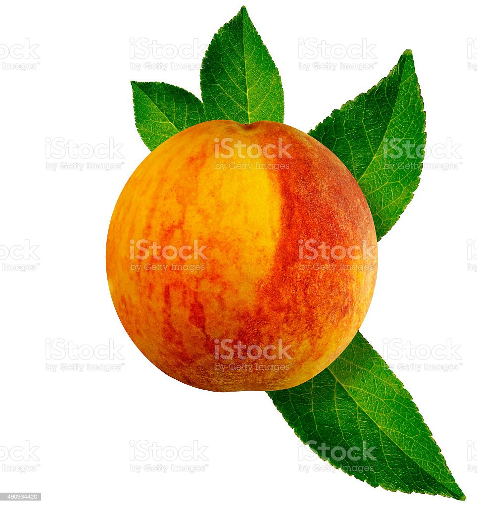 Peach isolated on white background with clipping path. Closeup. stock photo