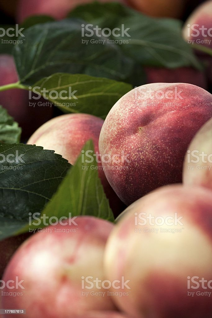 Peaches and green leaves stock photo