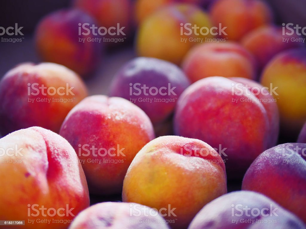 Peaches from kelowna stock photo