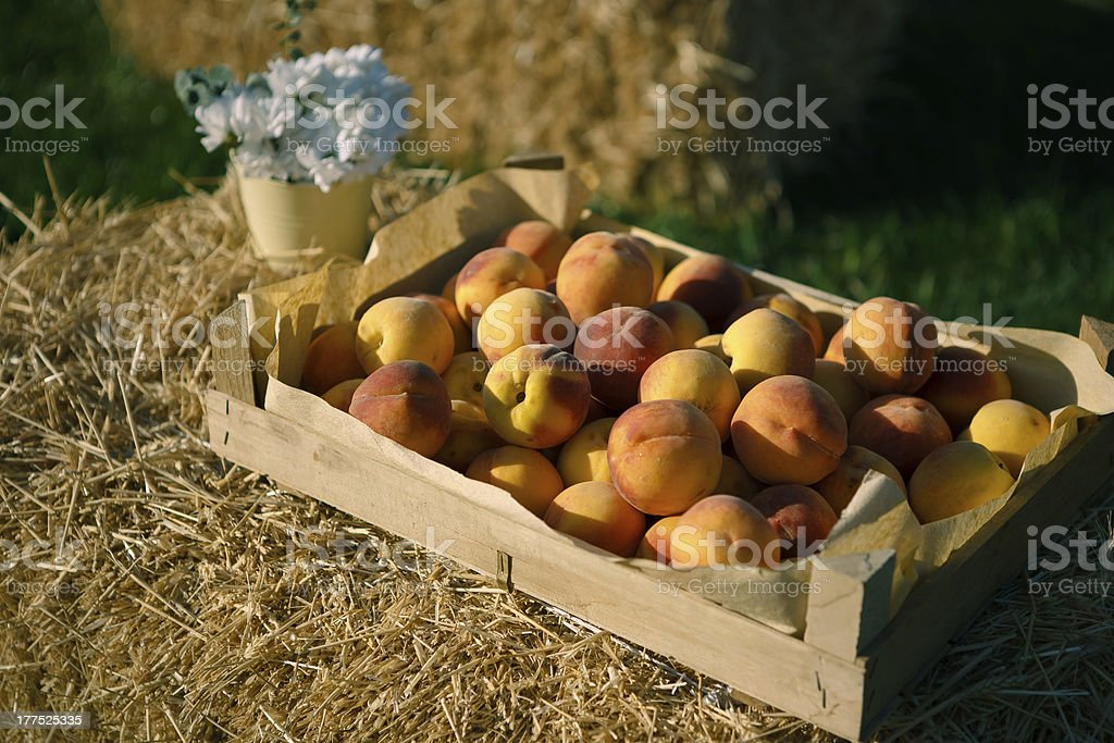 Peaches in the box royalty-free stock photo