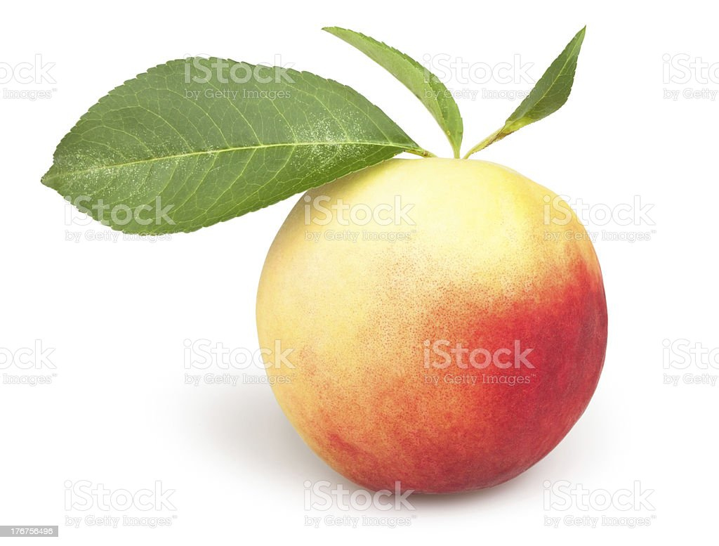 peaches one leaves stock photo