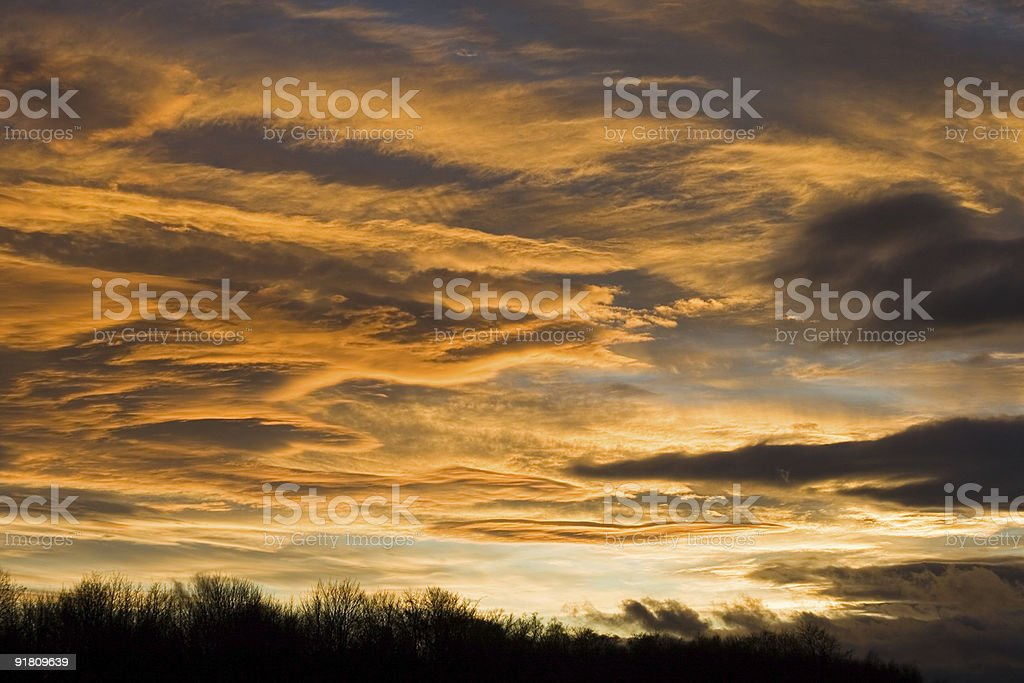 Peachy sunset sky over a treeline royalty-free stock photo