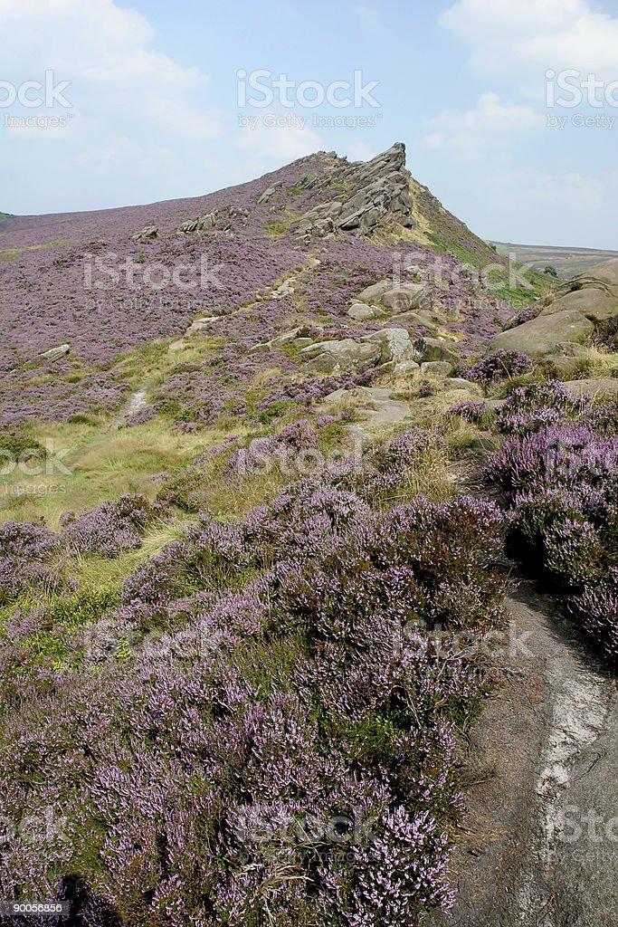Peak District Moorland in England stock photo