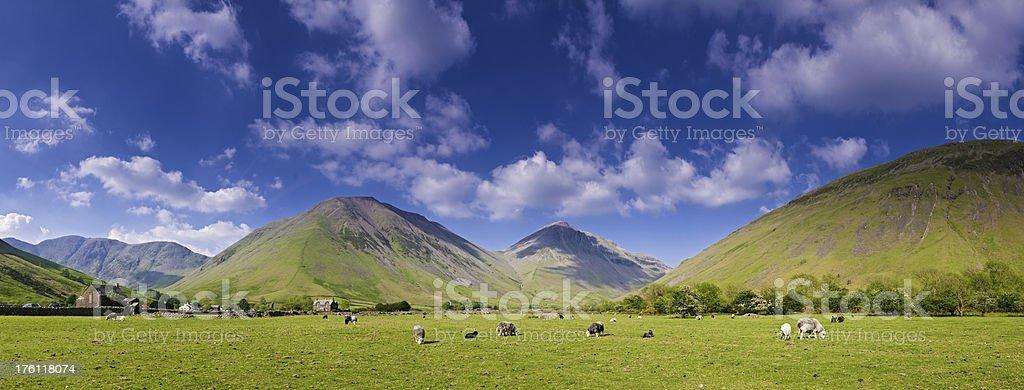 Peaks and pasture panorama beautiful Lake District landscape UK royalty-free stock photo