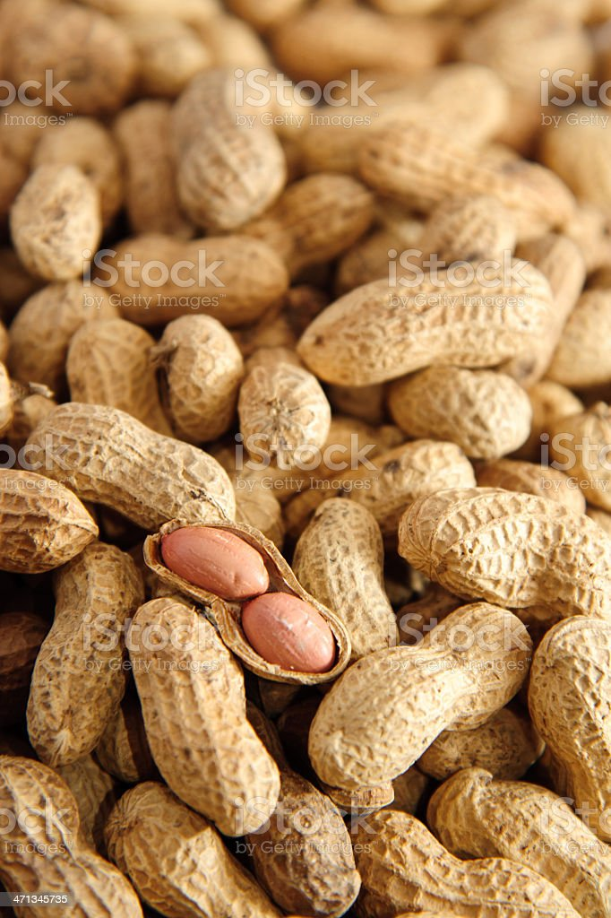 Peanut and Shell royalty-free stock photo