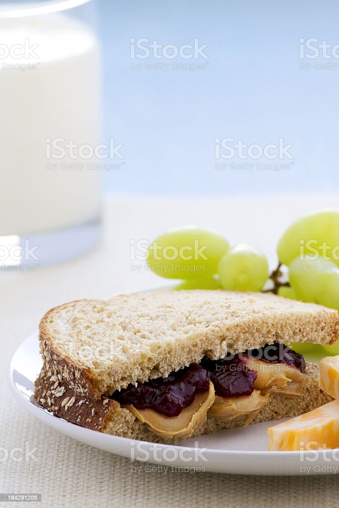 Peanut Butter Jelly Sandwich royalty-free stock photo