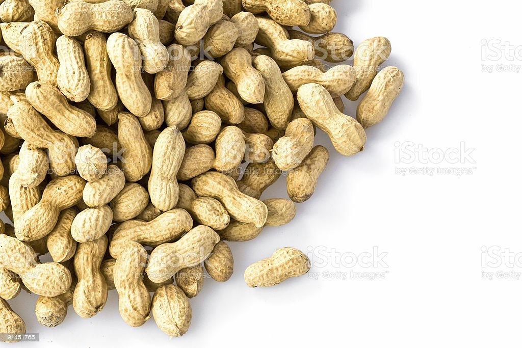 peanut fruit group isolated background royalty-free stock photo