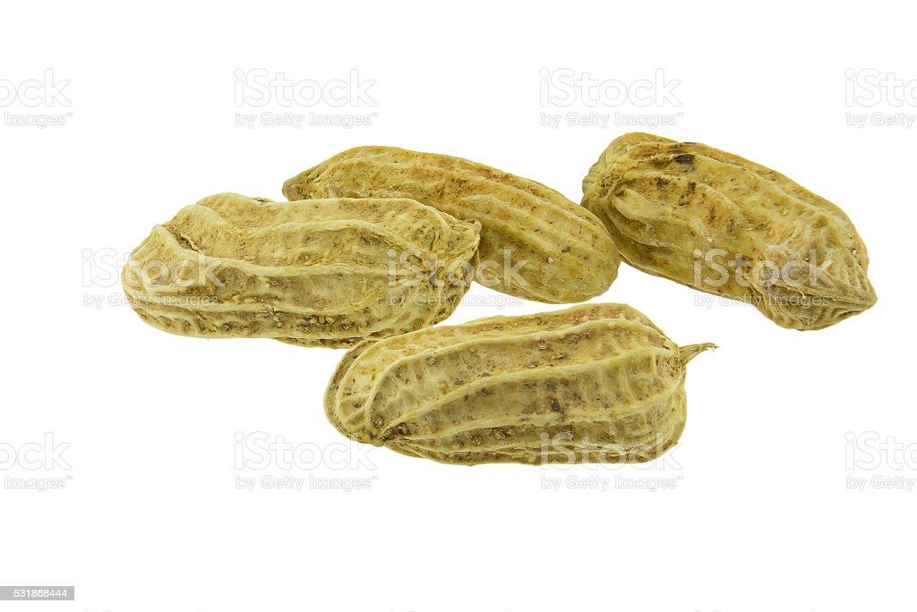 Peanut isolated on white background close up stock photo
