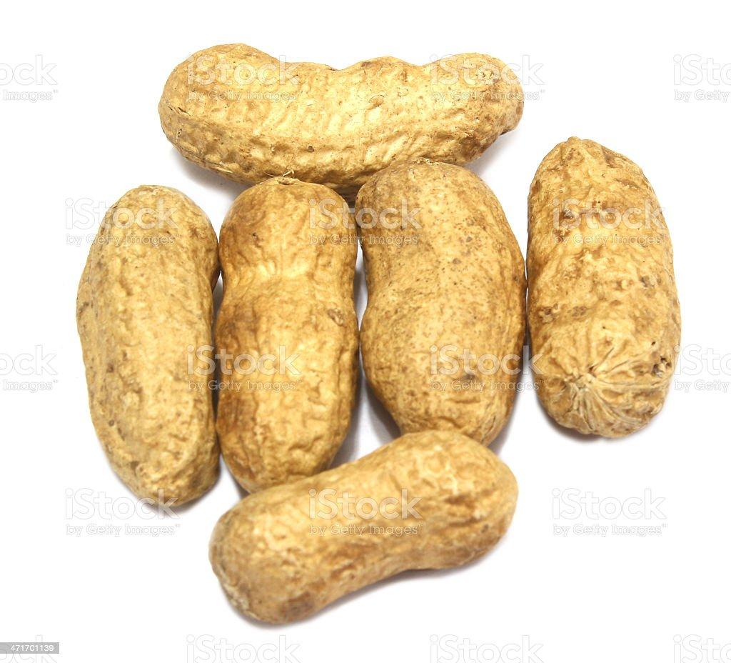 peanut royalty-free stock photo