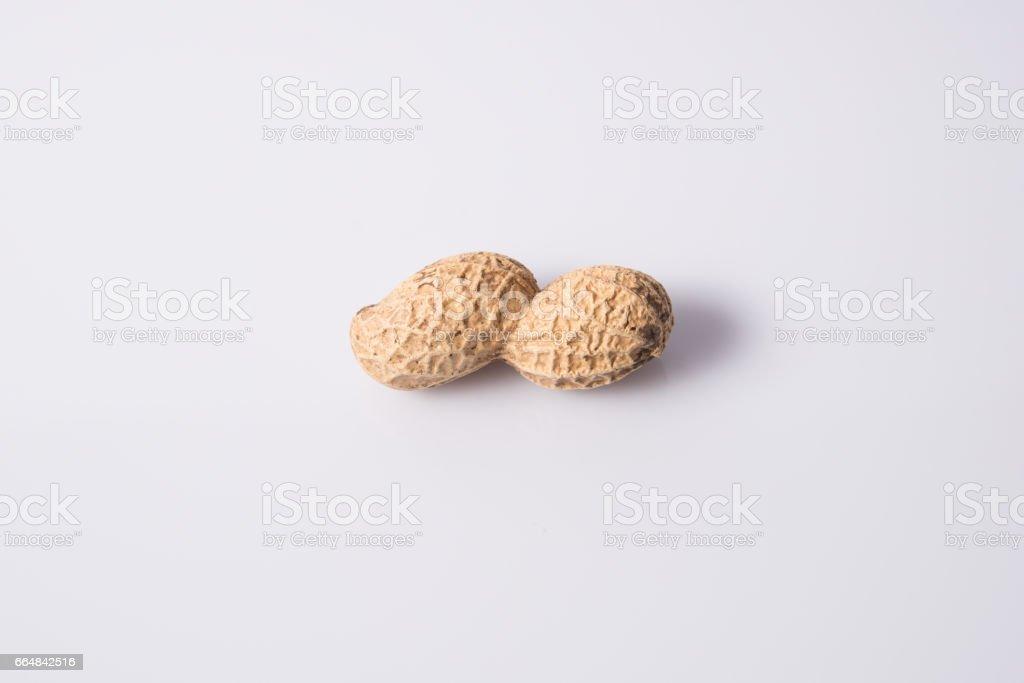 Peanut stock photo