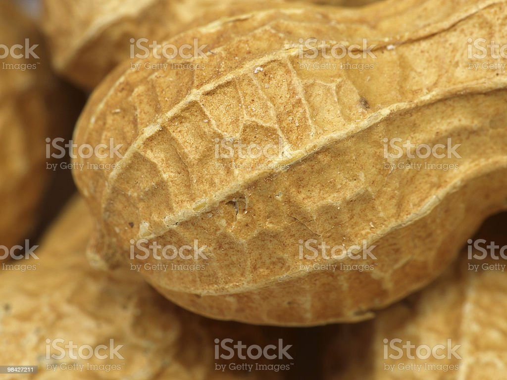 peanut royalty-free stock photo