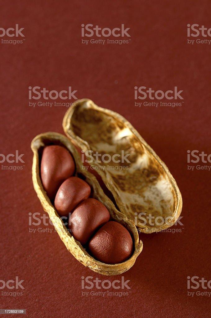Peanut Shell royalty-free stock photo