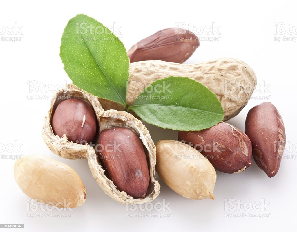 Peanuts gathered together and a tree leaf placed in center stock photo
