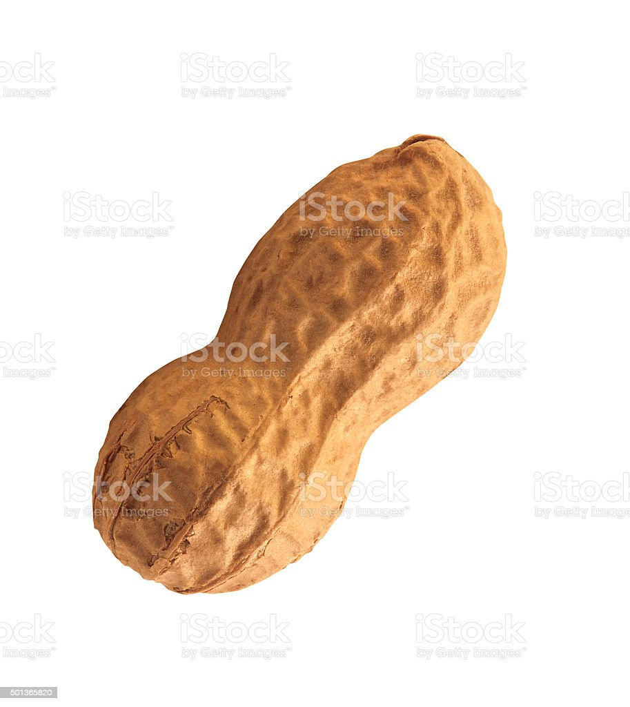 Peanuts isolated stock photo