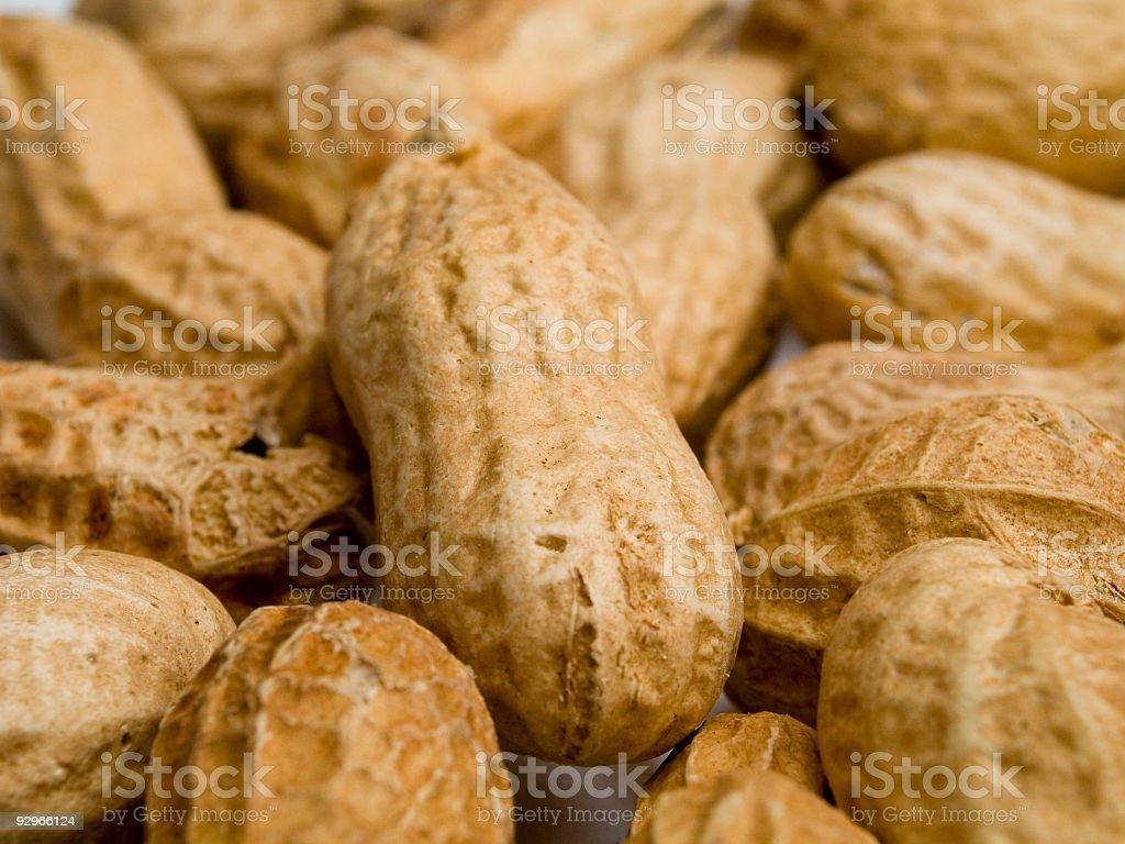 Peanuts On Shell (Macro) royalty-free stock photo