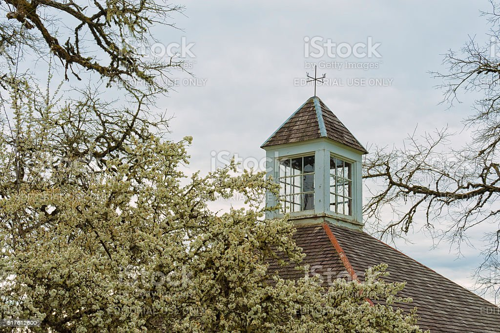 Pear tree bloosom frame the roof of a carriage house stock photo