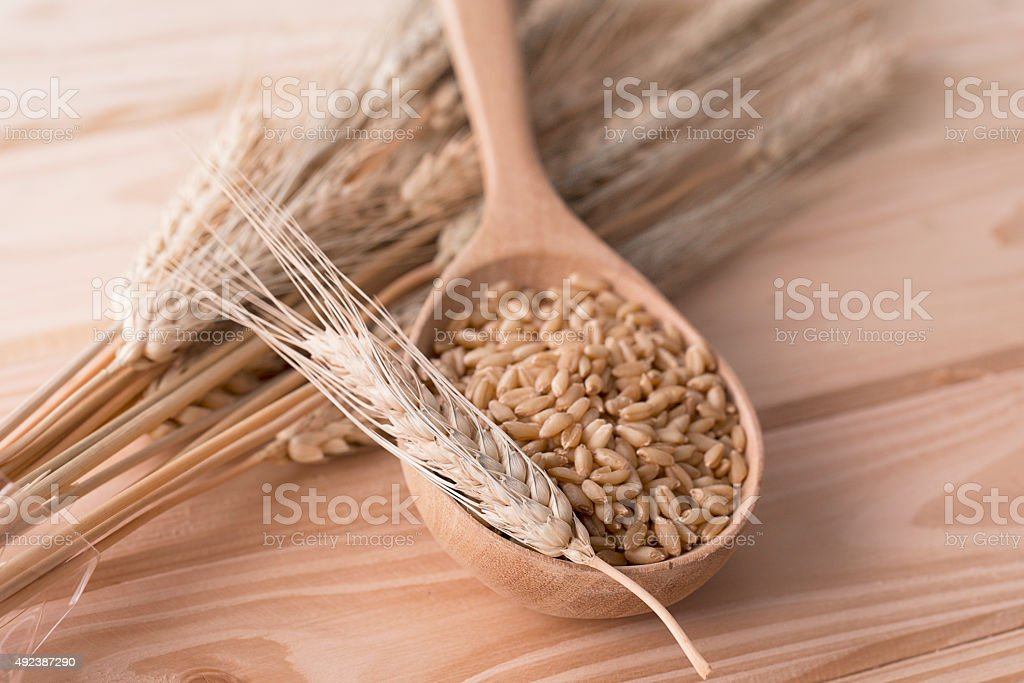 Pearl barley in wooden spoon stock photo