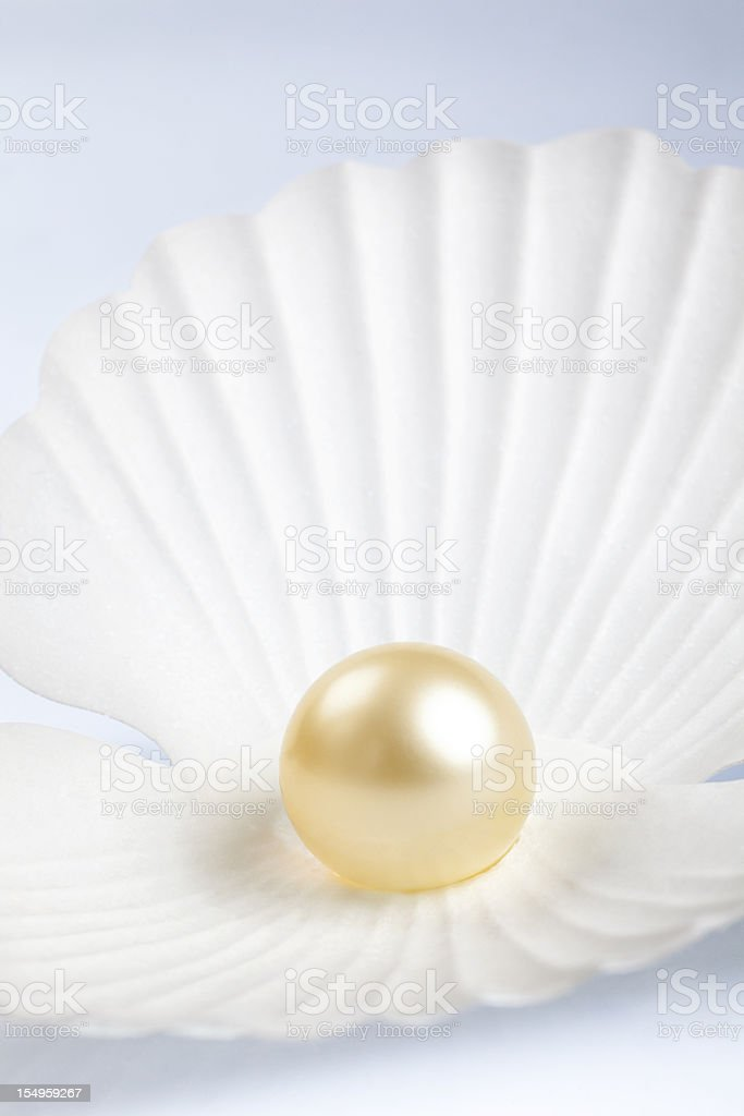 Pearl in a Shell stock photo