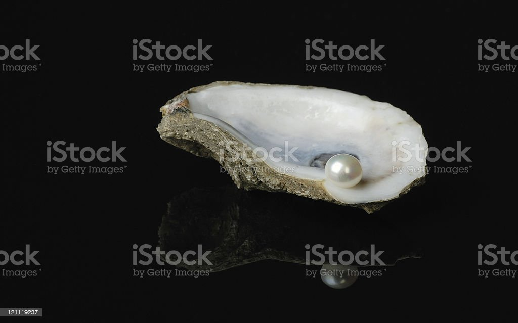 Pearl in Oyster Shell stock photo