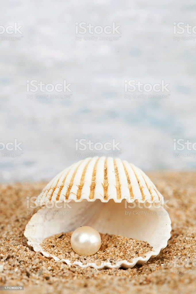 Pearl in shell royalty-free stock photo