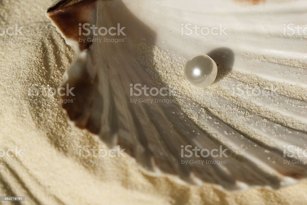 pearl in the seashell royalty-free stock photo