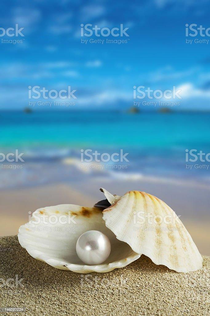 pearl stock photo